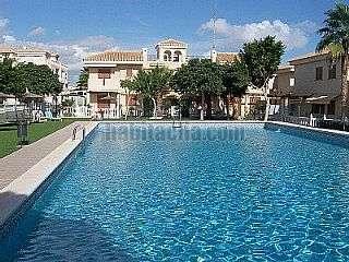 Alquiler Apartamento  Calle pintor ribera-playa flamenca,5. Alquiler piso en playa flamenca todo el a�o