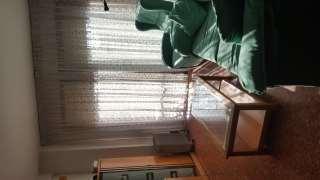 Alquiler Piso en Sevilla, 5. Pis cèntric amb mobles apte per a estudiants