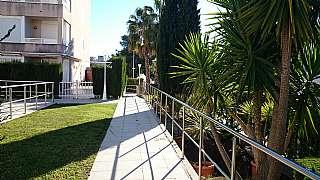 Alquiler Piso en Carrer ginesta, 1. Alquiler zona playa sant salvador �tico-solarium