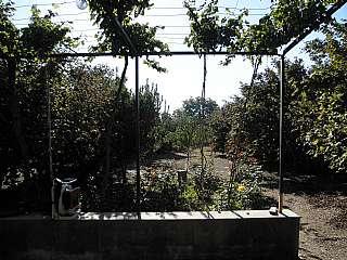 Terreno residencial en Mas d. Finca rustica a riudecols