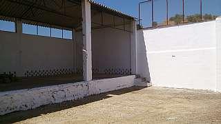 Nave industrial en Avenida olivares (los), s/n. Antiguo almacen de butano